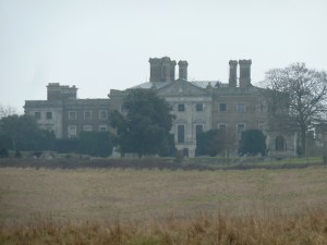 Essex Walks – Epping Forest Fallow Deer Upshire Video - Copped Hall