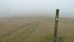 Walks And Walking - Cotswolds Walks Cheltenham Cotswold Way Walking Route - Misty Path