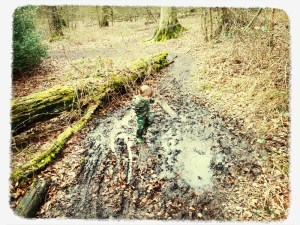 Walks And Walking Epping Forest Walks The Ditches Muddy Puddles