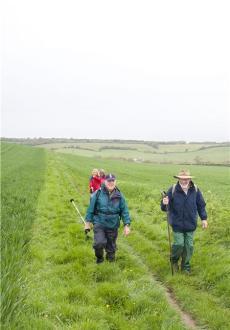 Isle of Wight Walking Festival 2013