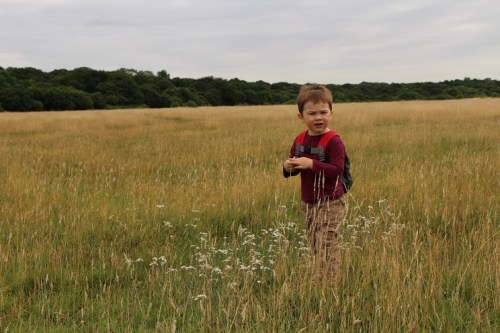 Tedi in Chingford Plain using the Canon EOS 100D Camera Epping Forest