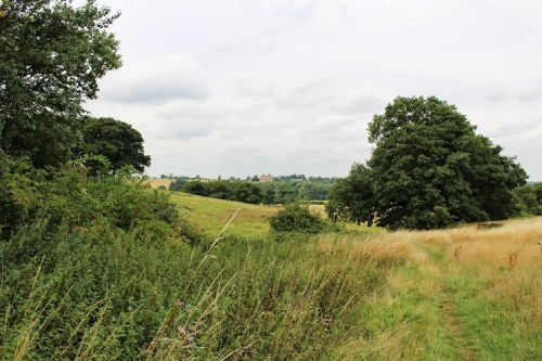 Walks And Walking - Epping Forest Bell Common Walking Route - View of Copped Hall from Bell Common