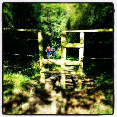 Walks And Walking - Hertfordshire Walks Hatfield Forest Walks - Stile