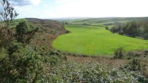 Walks And Walking - Dorset Walks Dorchester Hardys Monument Walking Route - Bronkham Hill