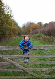 Walks And Walking - Essex Walks Epping Forest Warlies Walking Route - Tedi