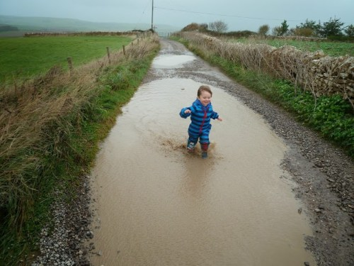 Walks And Walking - Weymouth Walks Langton Herring Walking Route - Tedi Muddy Puddles