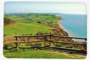 Walks And Walking - Lyme Regis Walking Festival Dorset - Golden Cap