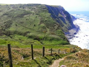 Walks And Walking - Morwenstow Walk In Cornwall - Cornakey Cliff
