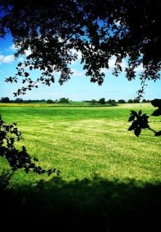 Walks And Walking - Sandwich Walk in Kent