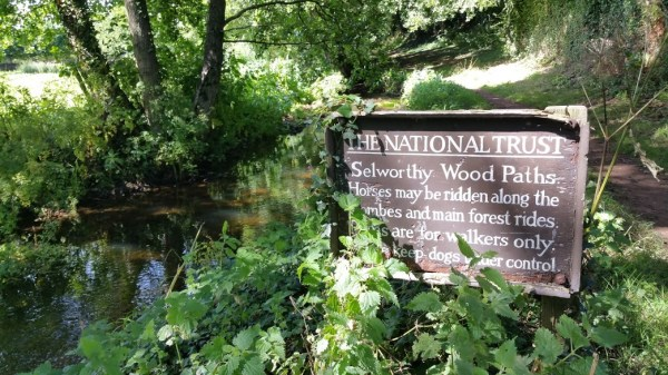 HF Holidays 4 Mile Family Circular Walk From Holnicote House - Selworthy Wood Paths