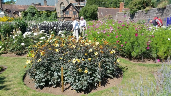 HF Holidays 7 Mile Linear Easy Walk to Dunster - National Trust Dream Garden