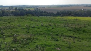 Walks And Walking - Port Lympne Walk In Kent - Stutfall Castle Remains