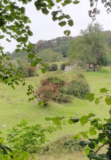 Walks And Walking - West Hythe Walk In Kent - Stutfall Castle Remains