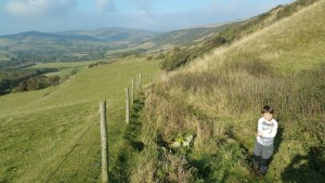 HF Holidays Guided Walk – Carisbrooke Castle Walking Route - Limerstone Down