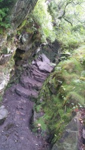 Walks And Walking - The Loaches Walk In The Peak District - Luds Church Entrance
