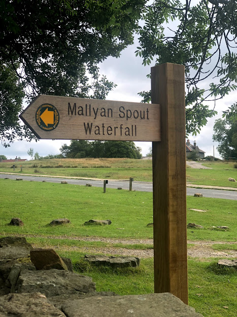 First stop on our walk was Mallyan Spout Waterfall