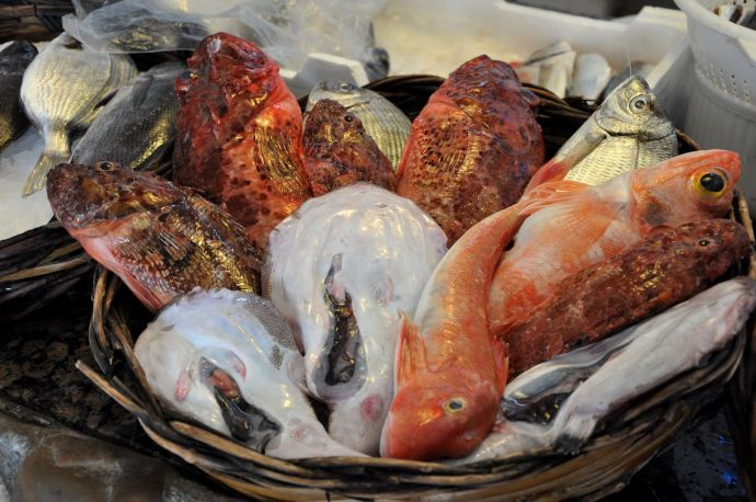 Sustainable seafood is hard to find in Italy
