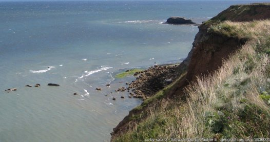 Saltwick Nab Viewed from the Cleveland Way coastal footpath. Saltwick Bay is noted for its fossils, principally ammonites and belemnites but also dinosaur/reptile remains.