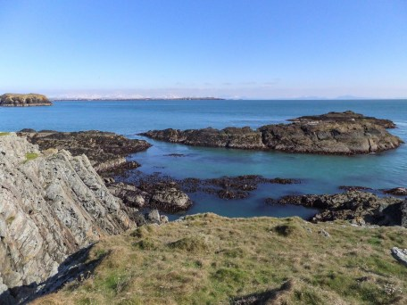 Rhoscolyn. South Stack 184