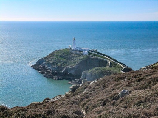 Rhoscolyn. South Stack 224