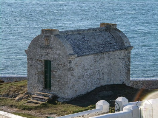 Rhoscolyn. South Stack 256