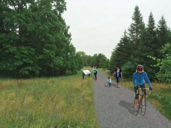 Visual Rendering of Proposed Path