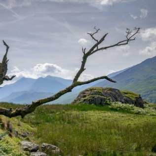 Guided walking day out on Moel Siabod- square