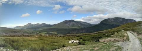 Snowdon_Ranger_Path_31
