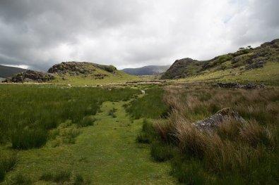 Clogwyn y Gwin Path and Maesgwm (64 of 135)