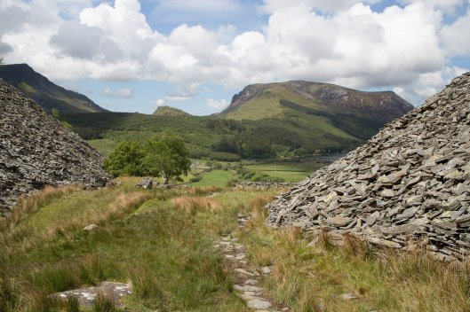 Clogwyn y Gwin Path and Maesgwm (92 of 135)