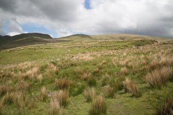 Clogwyn y Gwin Path and Maesgwm (99 of 135)