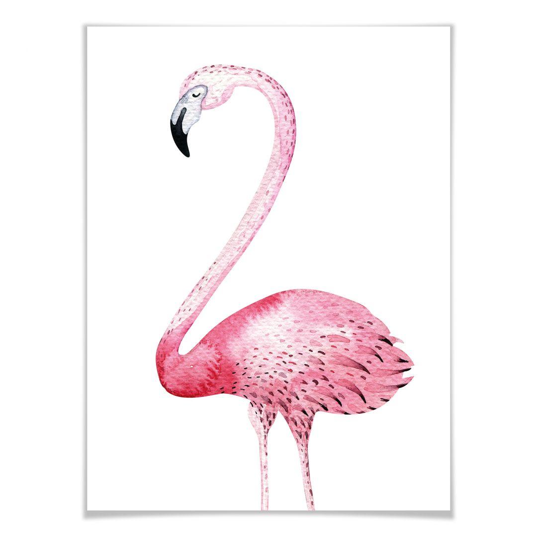 Poster Kvilis  Pink Flamingo 01