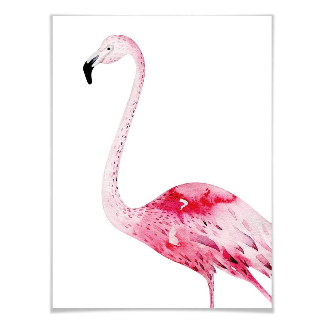 Poster Kvilis  Pink Flamingo 02