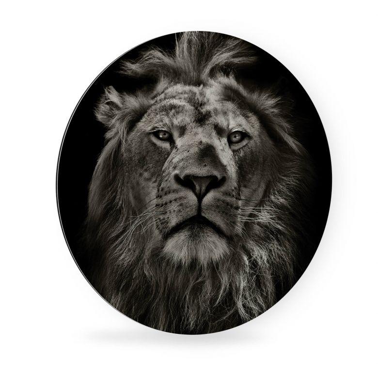 tableau en alu dibond lion rond