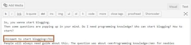 start blog text editor