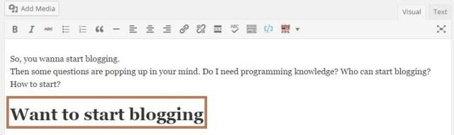 start blog visual editor