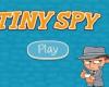 Tiny Spy