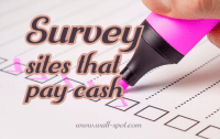 Online surveys that pay