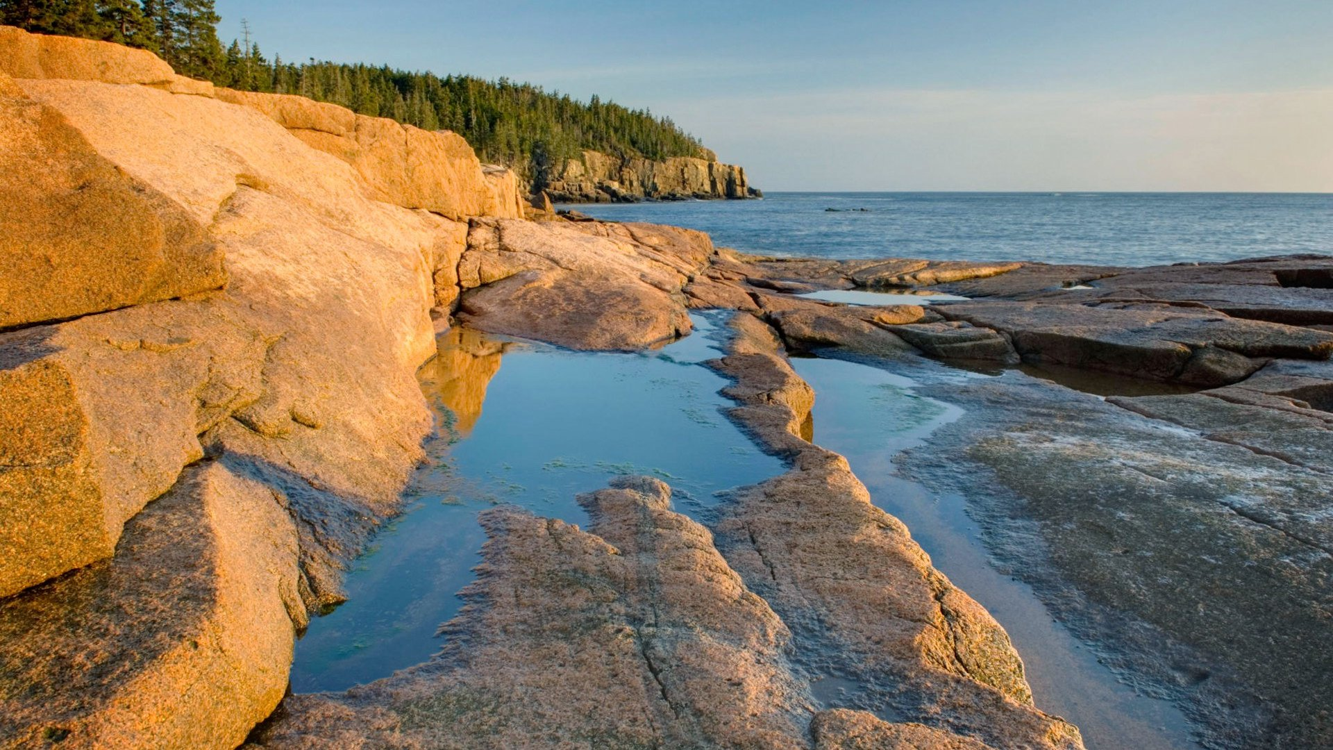Wallpaper Craft Cars Otter Point In Morning Light Acadia National Park Maine