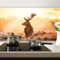 Majestic Deer - Panorama - Kitchen Splashback