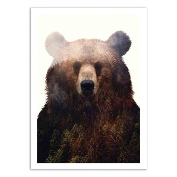 Art-prints Posters And Frames Of Illustration