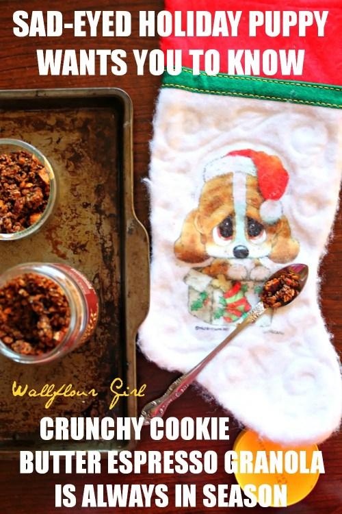 Crunchy Cookie Butter Espresso Granola 9--010614