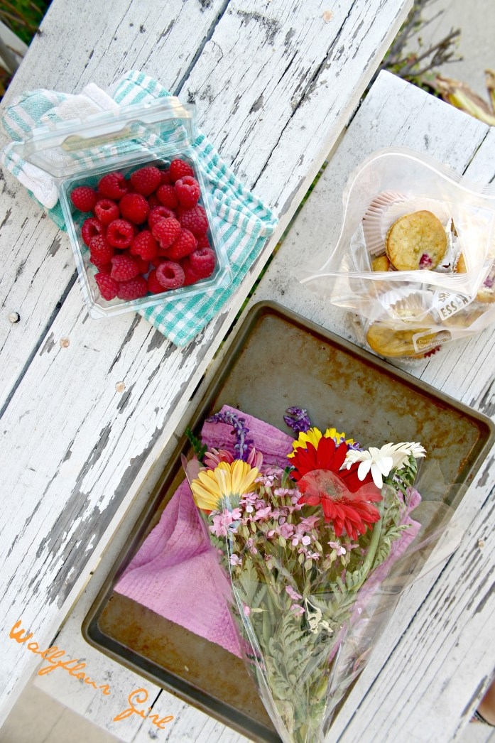 Orange Raspberry Muffins 13--062514