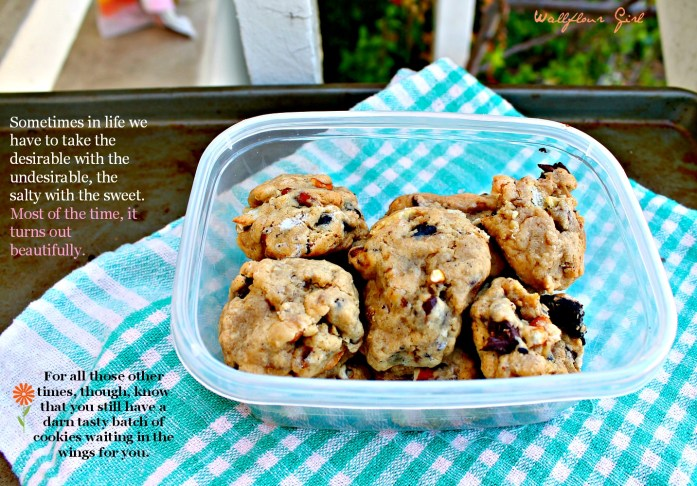 Salty and Sweet Compost Cookies 17--060514