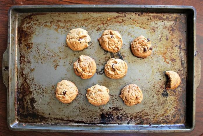 Flourless Peanut Butter Cookies 13--092514