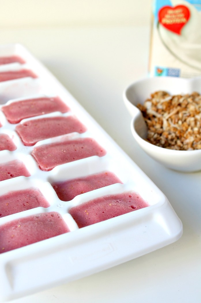 Strawberry Smoothie Cubes 12--120814