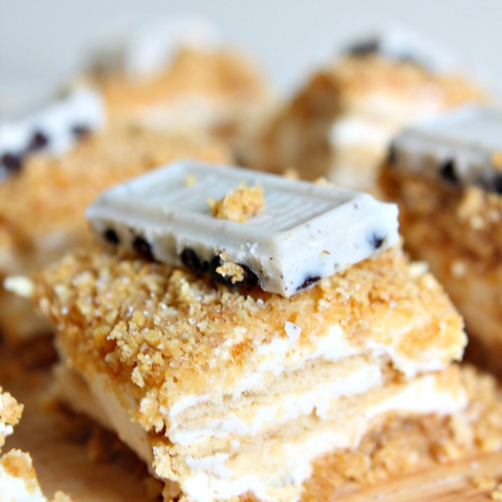 Graham Cracker Crumb Cheesecake Bars with Golden Oreos: a recipe/post from your newest PhD candidate! (eep!)