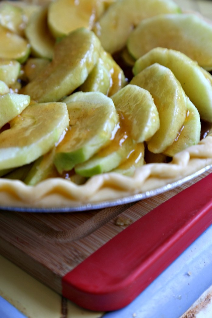 Easy French Apple Pie 3--061816