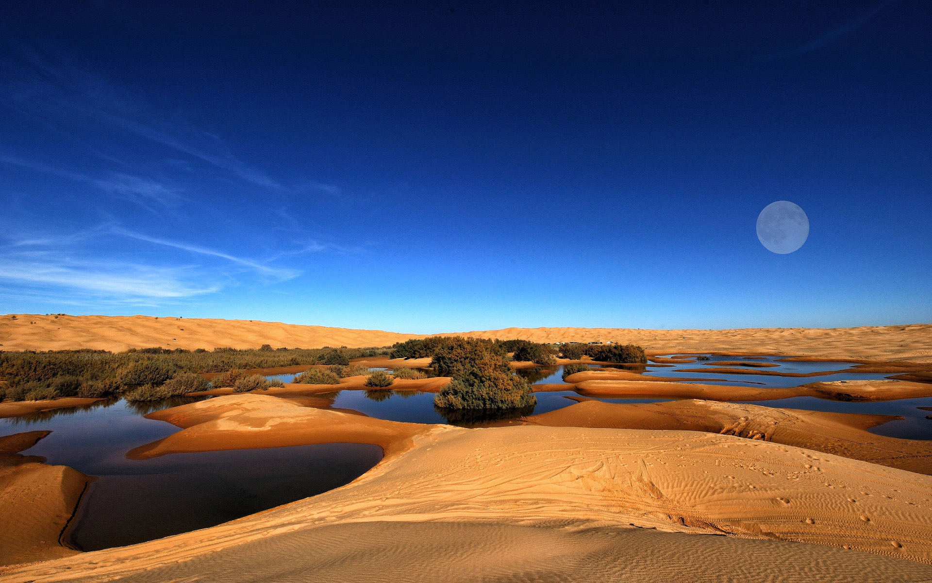 Girl Quote Wallpapers 33 Amazing Desert Landscapes High Quality Wallpapers