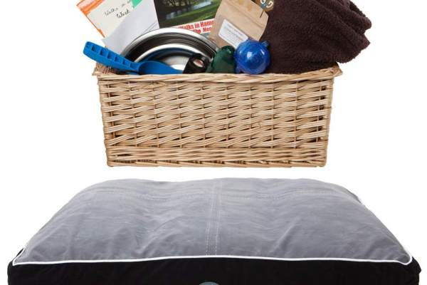 Welcome dog basket and bed